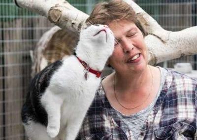 Kattenpension-Silvestris-Els-Driesprong-kat-knuffelen